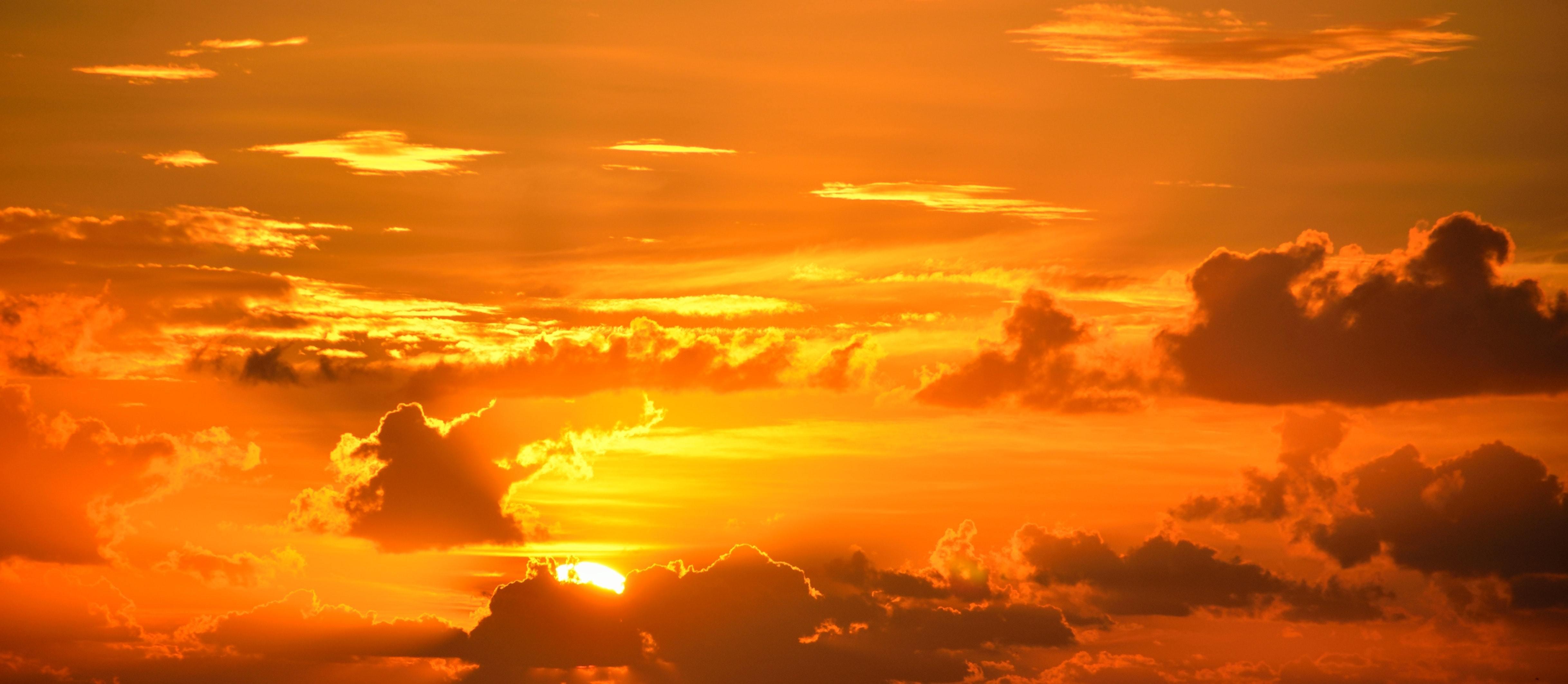 backlit-beauty-breathtaking-267151.jpg